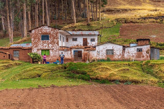 Abra La Raya - Mountain Pass  (19)