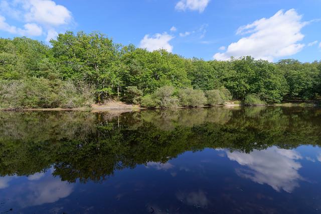 Petit étang neuf