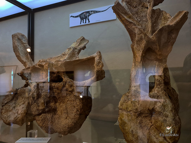 Tierra de Dinosaurios en Burgos (14)