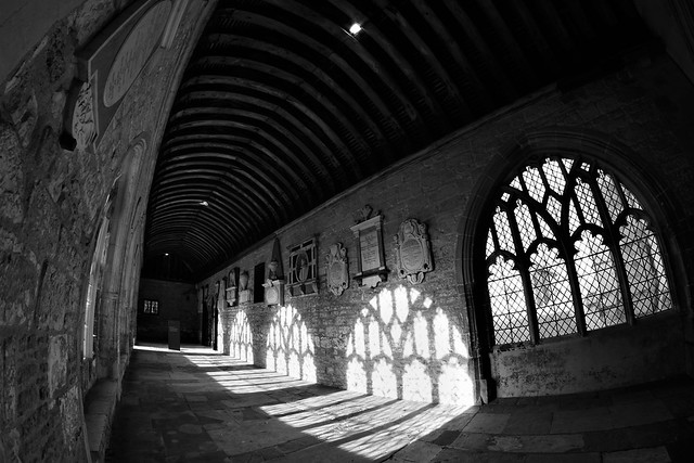 Cloisters 8mm