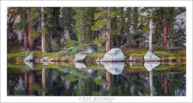 Sierra Shoreline, Morning