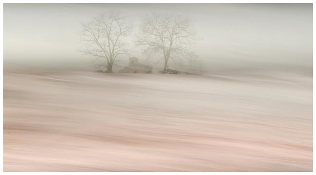 La felicidad es como la niebla, cuando estamos dentro de ella no la vemos.