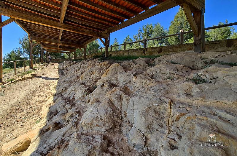 Tierra de Dinosaurios en Burgos (34)