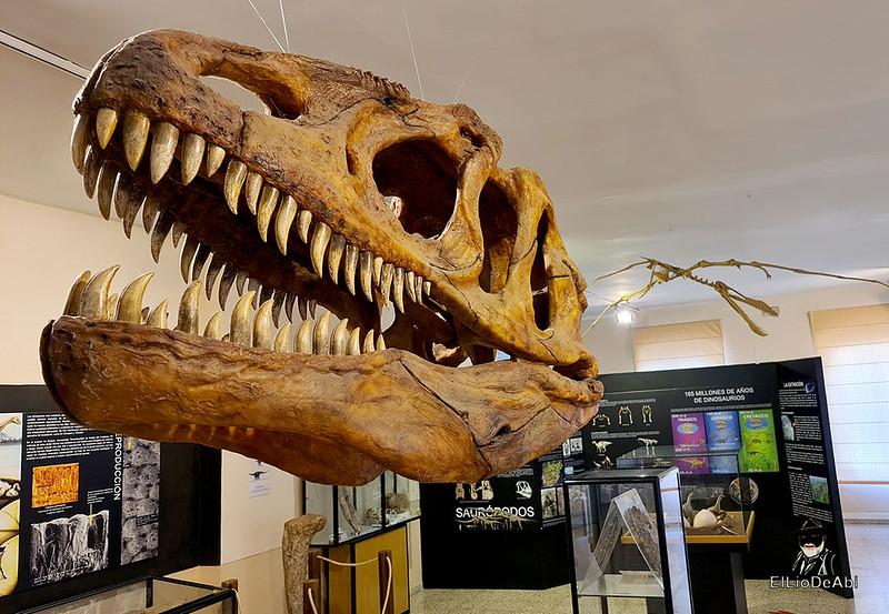 Tierra de Dinosaurios en Burgos (17)