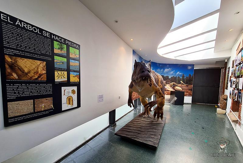 Tierra de Dinosaurios en Burgos (10)
