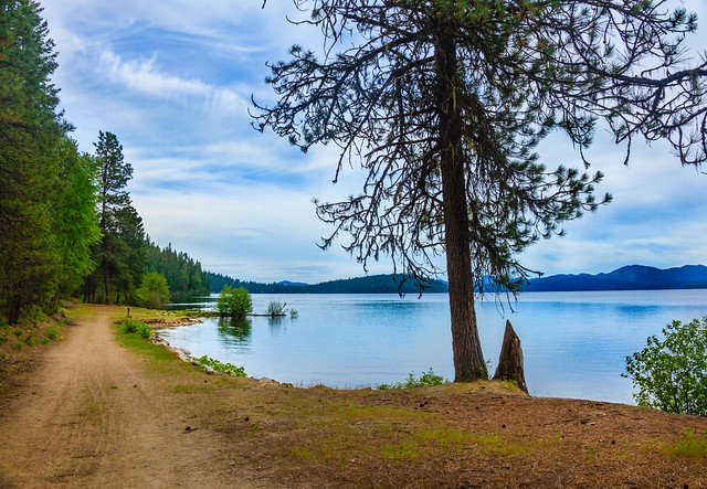 Priest Lake Walking Trail