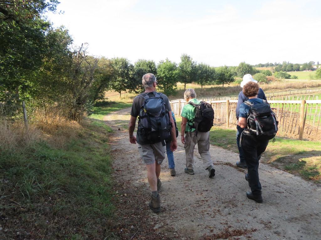 UK - Essex - Near Mount Bures - Walking along footpath