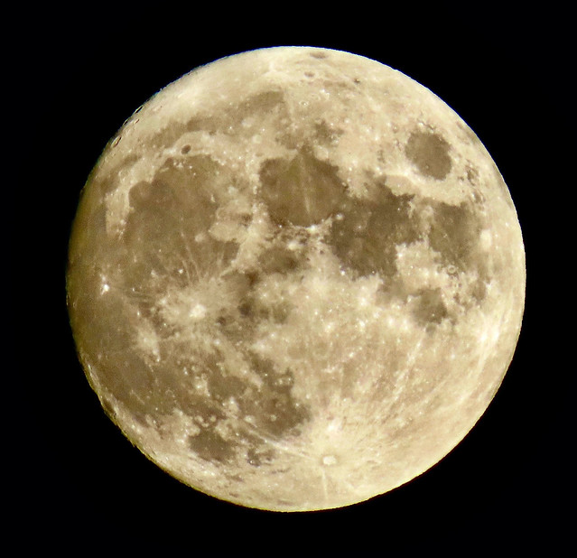 Planet Earth''s Only Natural Satellite Is Almost Fully Illuminated By the Sun