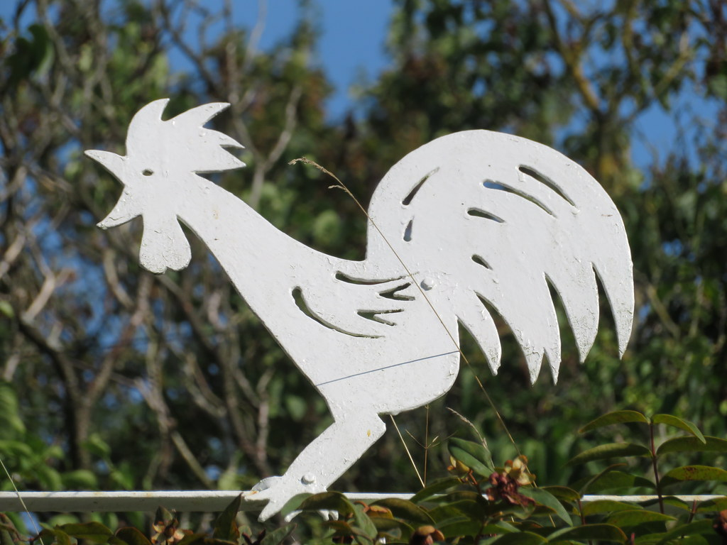 UK - Essex -  Wakes Colne - White cockerill sign