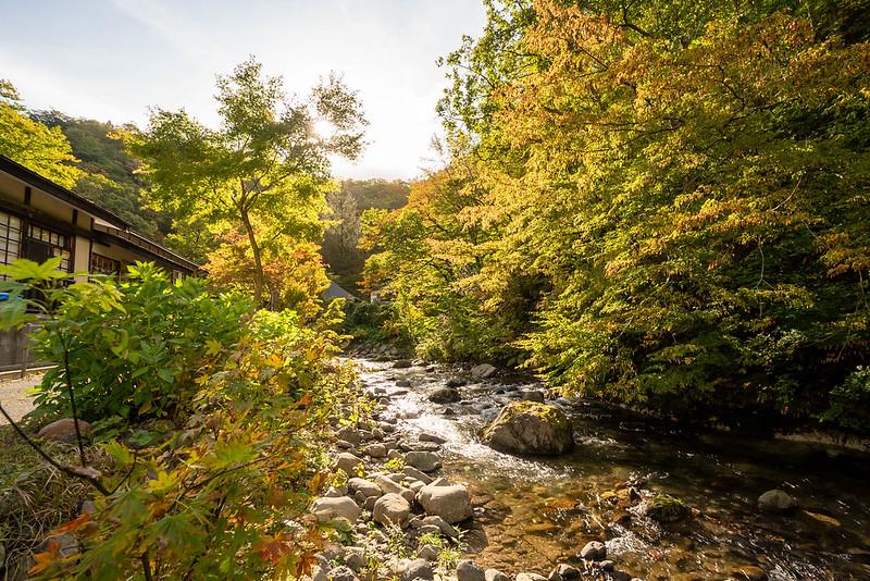 青荷温泉裏の川