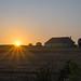 Sunrise at local Farm