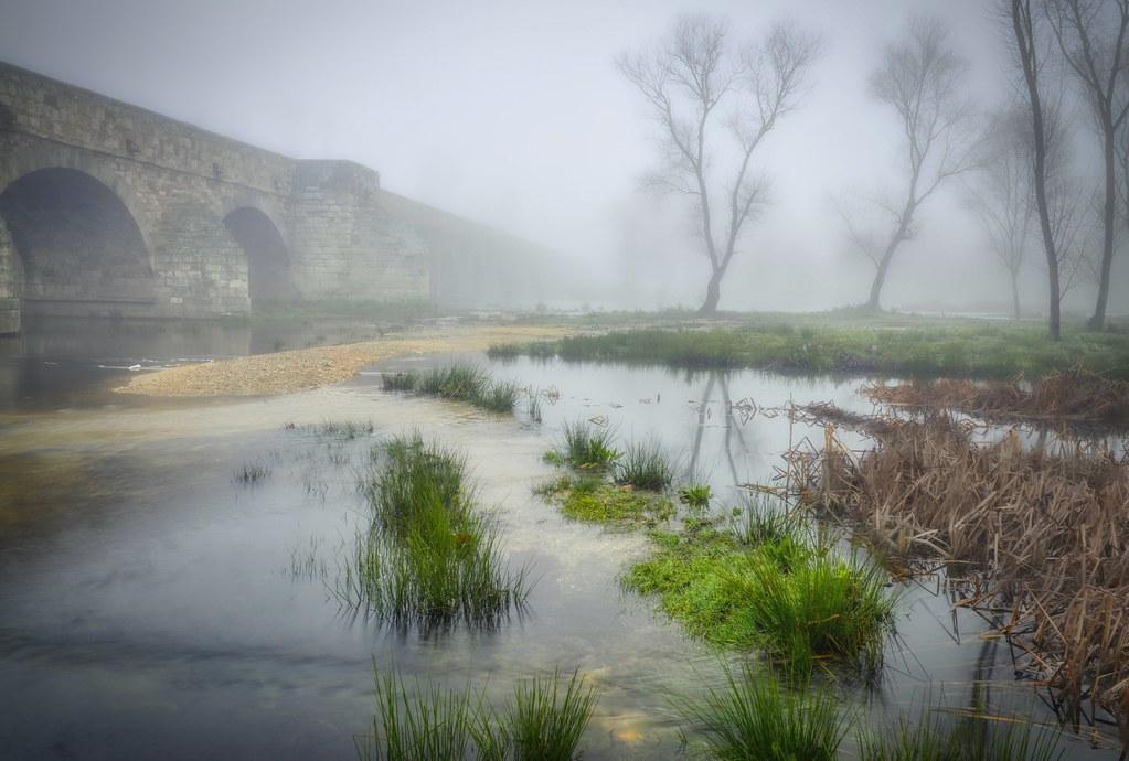 Amada niebla!! - In explore - Beloved mist!!