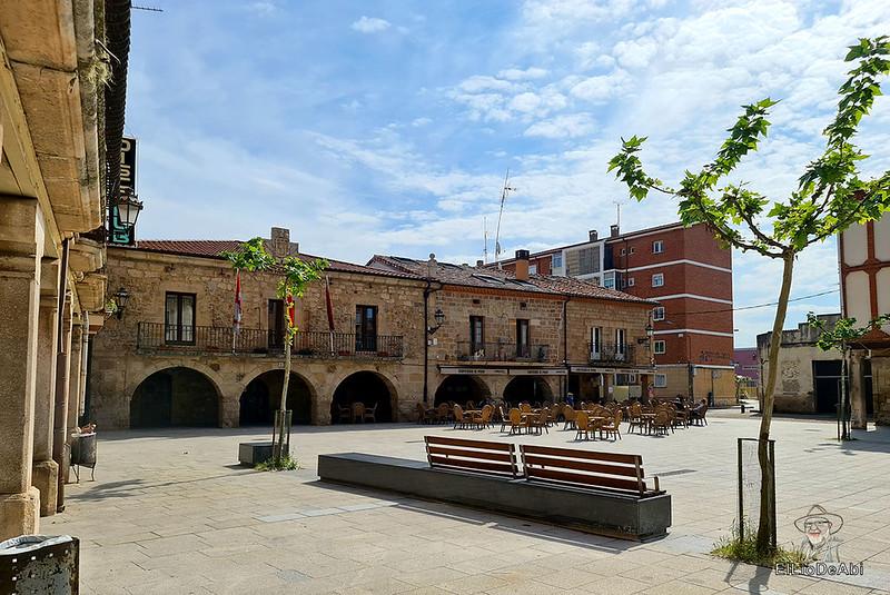 Tierra de Dinosaurios en Burgos (1)