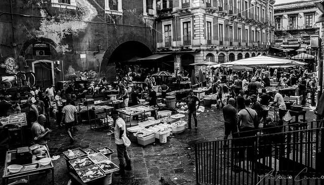 Fish Market in Sicily