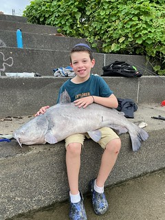 Photo of a boy holding a very large catfish