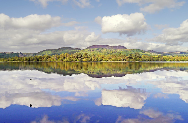 Loch of the Lowes Reflections