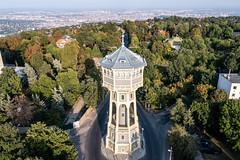Elisabeth tower (8 de 9)