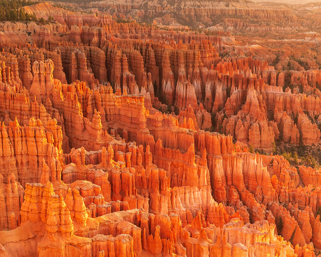 Bryce Canyon National Park   |   Hoodoos