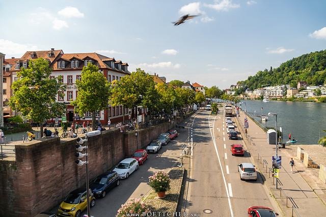 Road along the Neckar River - September 2021 VII