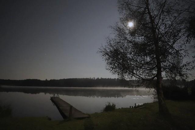 Mondscheinabend am See