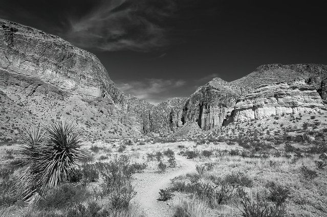 Trail To Burro Mesa Pouroff