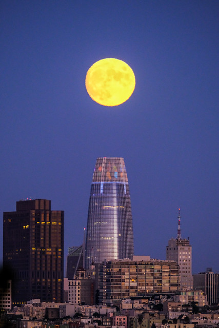Harvest Moon over the Salesforce Tower