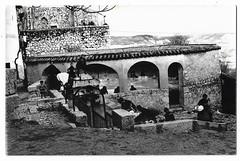 Vistas de Horche (Guadalajara) : [mujeres en el lavadero]