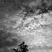 2021-09-19 - Dimanche - 262/365 - Midnight Sky - (Miley Cyrus)