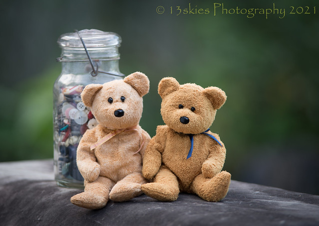 Bears and Buttons (HTBT)