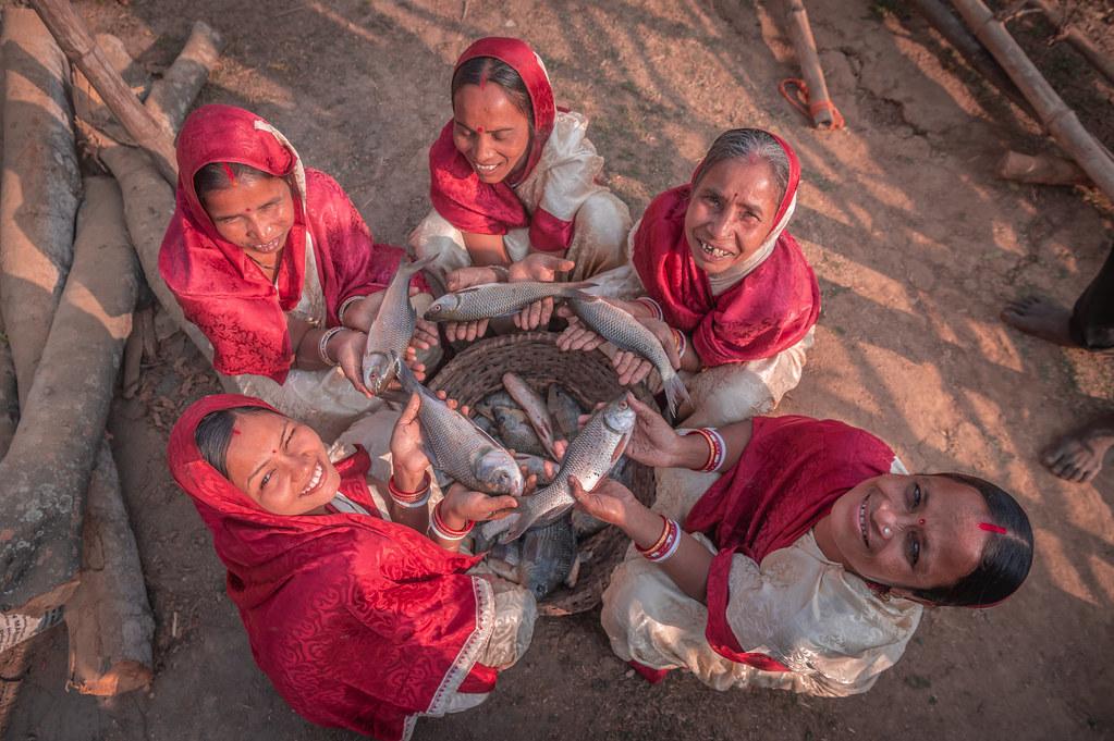 Over 60,000 women increased their income through fish farming ventures using Gram Panchayat Tanks. Photo by Detour Odisha