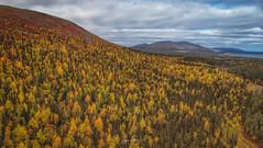 Colors of Lapland *EXPLORE*  (由  Jyrki Liikanen