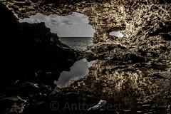 animal flower cave 4