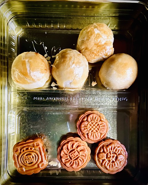 264/365. A lovely friend travelled from her home (within the 10klm) to deliver home made moon cakes to me today which were made to celebrate Mid-Autumn Festival.