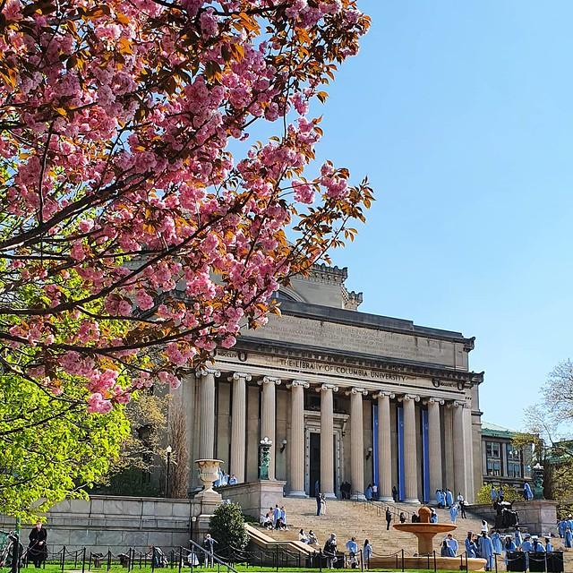 My three seasons at Columbia - spring