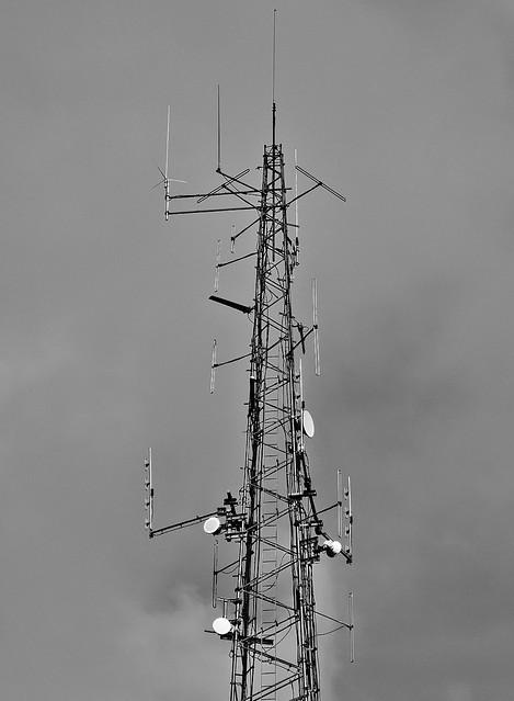 Antennae.