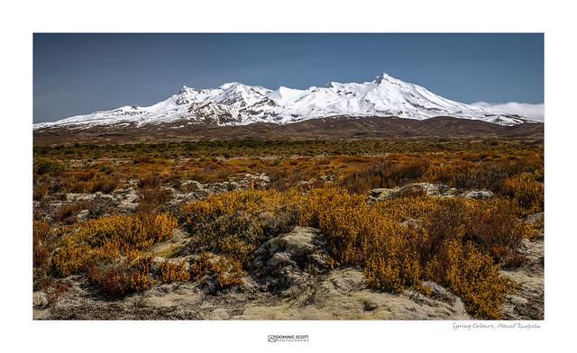 Spring Colours - Mount Ruapehu