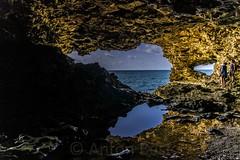 animal flower cave 2