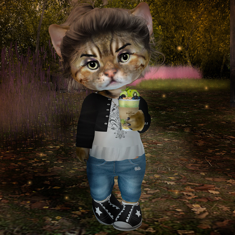 """Hello Hello  Let's welcome Autumn with a new seasonal Market at Petite Village.  NEW this year: There are 16 complete and stylish outfits at discounted pack prices - girls and guys! also, mix & match items for your individual fashion statements.  Hope to see you at the Market <a href=""""http://maps.secondlife.com/secondlife/Dizza/102/212/21"""" rel=""""noreferrer nofollow"""">maps.secondlife.com/secondlife/Dizza/102/212/21</a>  PS: Stylecards are included in each pack - This cool hairstyle is from DP Yumyum - you need to try demos there! So many styles look even better on us then on the Biggies 😉"""