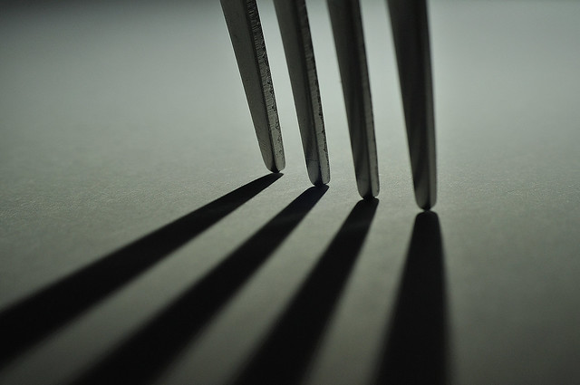 Shadow Of A Hard Fork