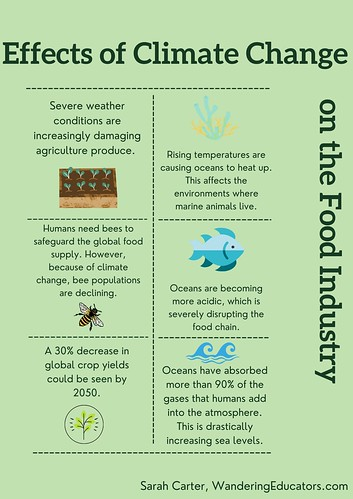 Graphic of the effects of climate change on the food industry