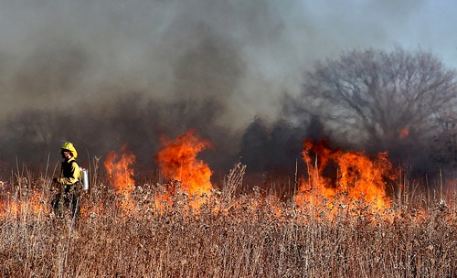 Wildfires. From Linking Human Rights and Climate Change