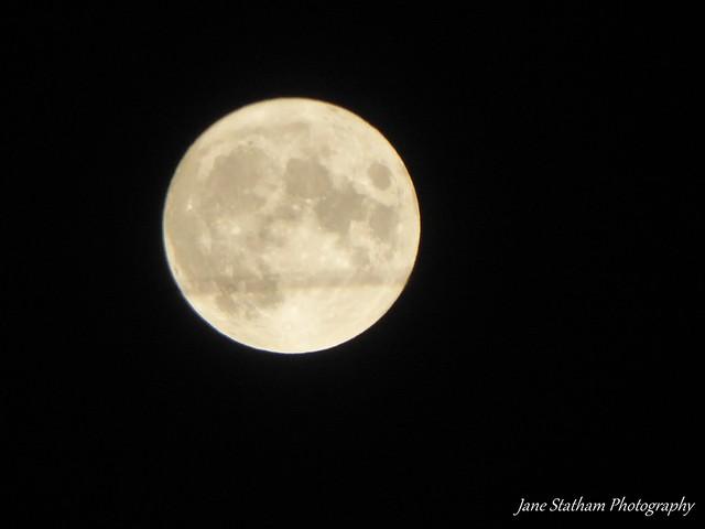 Yesterday's Harvest Moon.