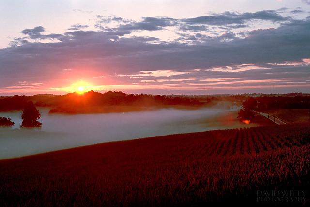 Sunrise On Silberra