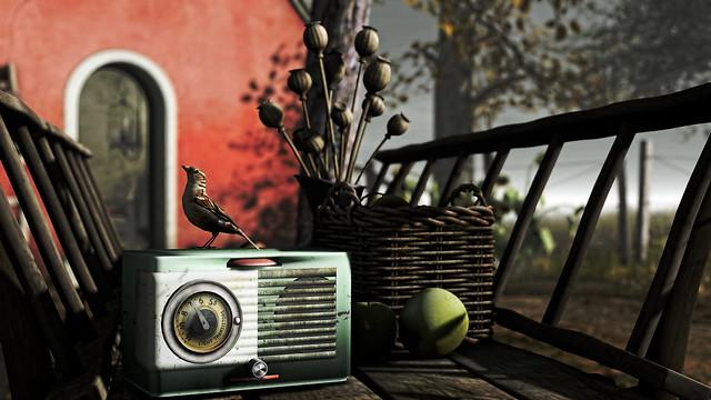 Bird song at Nelipot