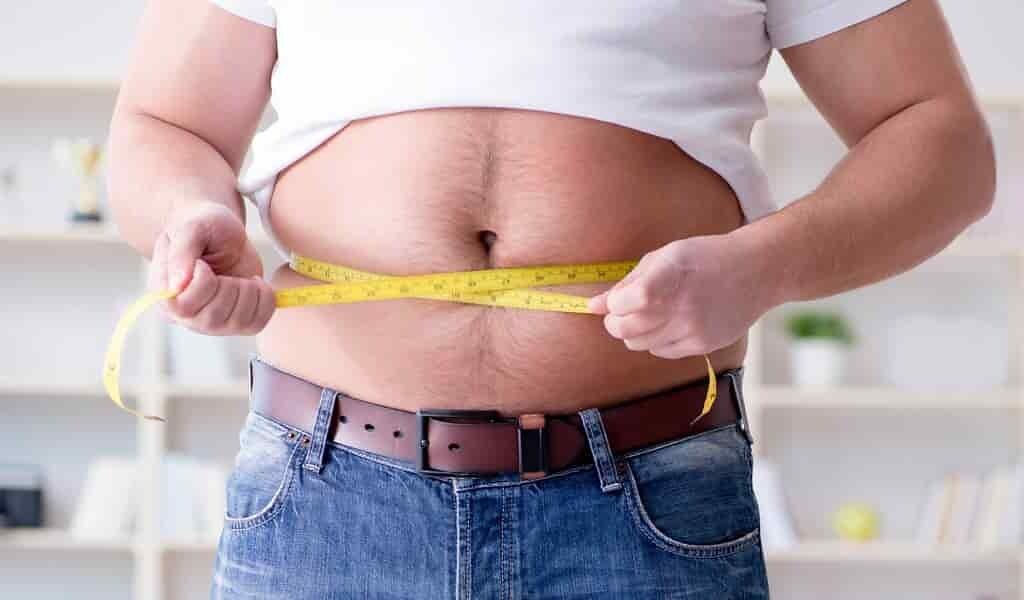 Identification d'une cause et d'un traitement potentiel de l'obésité