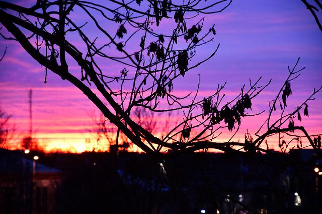 Sunset in Tallinn I