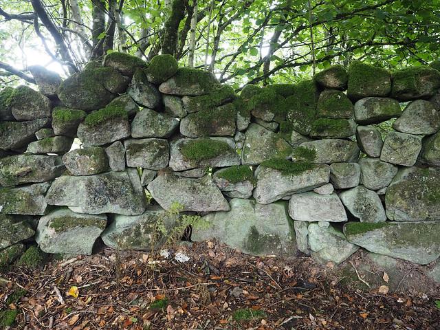hillside wall