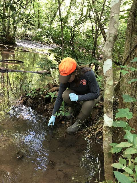 Elizabeth Bradley takes water samples.