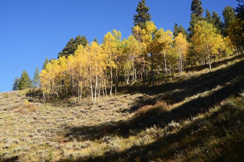 Wheeler Lakes Trail Hike (32)