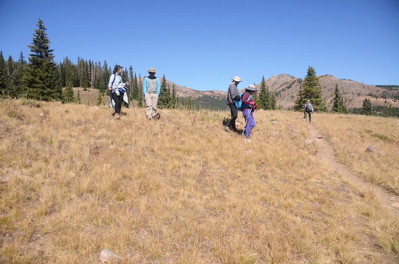 Wheeler Lakes Hike (92)